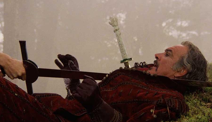 Первое поражение Романа от скандинавов